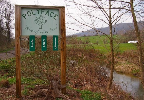 Polyface Farm, Joel Salatin