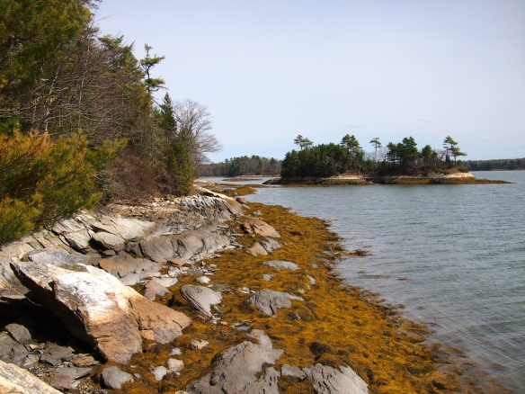 Maine, Wolfe's Neck, Brunswick, ME
