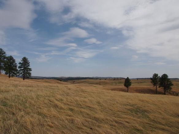 Wind Cave, SD, Prairie